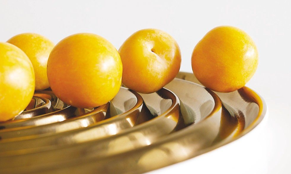 Fruitschaal Magisso-Yipp & Co